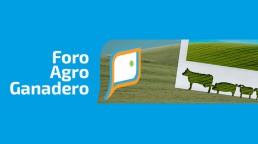 Boletín de Foro Agro-Ganadero