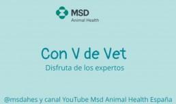 """MSD Animal Health presenta """"Con V de Vet"""", el programa para el veterinario actual"""