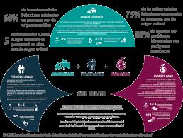 Día mundial de la zoonosis: animales y personas compartimos una única salud
