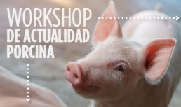Workshop Zoetis en Vic sobre las últimas novedades en el porcino