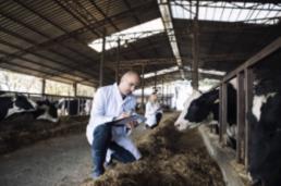 AXON COMUNICACION, Informe de 2019 sobre los resultados del seguimiento de residuos de medicamentos veterinarios y otras sustancias en animales vivos y productos de origen animal