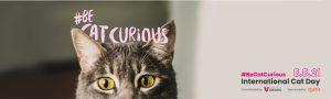 AXON COMUNICACION, Zoetis apoya una campaña para facilitar y optimizar la visita de los gatos a los centros veterinarios