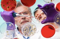 AXON COMUNICACION, Merck premia la búsqueda de tratamientos personalizados para pacientes oncológicos