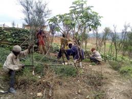 AXON COMUNICCION, El Colegio de Jaén apoya un proyecto solidario de mejora alimentaria en Burundi