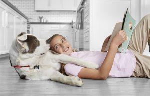 AXON COMUNICACION, Cómo afecta a las mascotas la vuelta de vacaciones