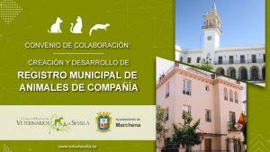 AXON COMUNICACION, Se renueva el convenio para la identificación de animales de compañía