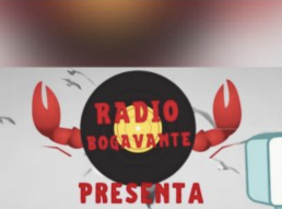AXON COMUNICACION, Radio Bogavante dona 300 € a los habitantes de La Palma